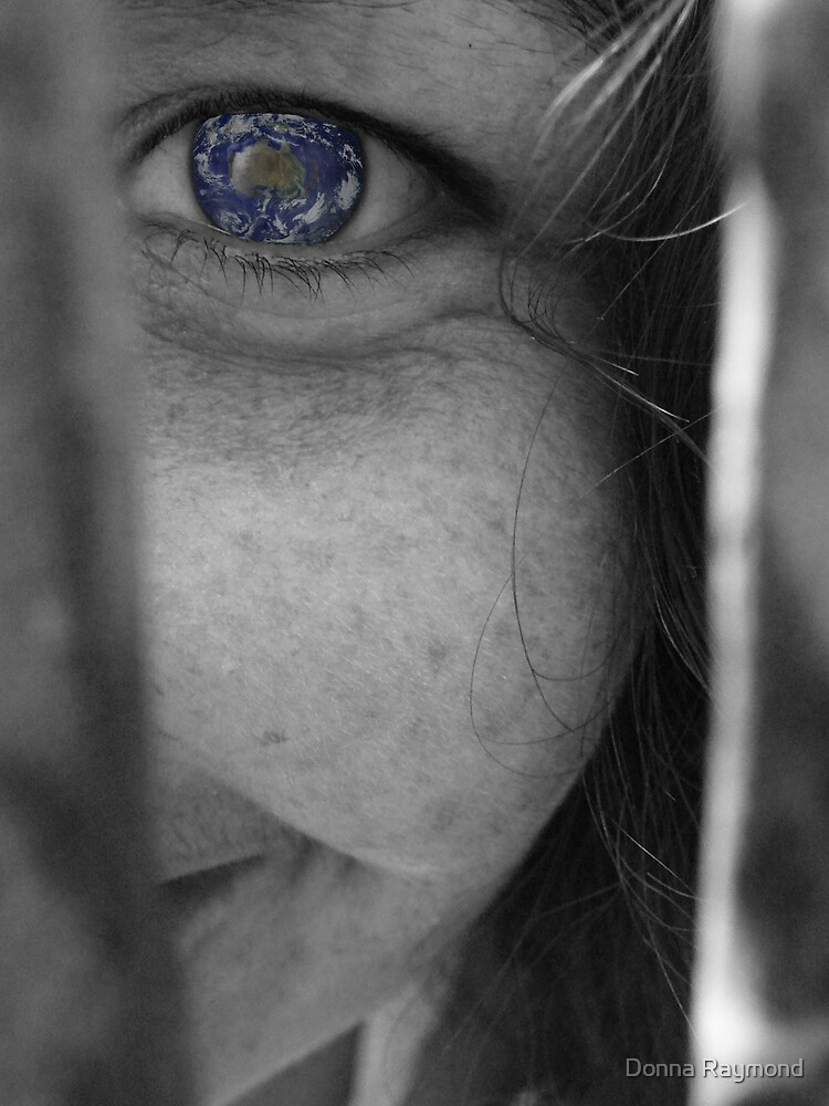 Eartheye by Donna Raymond