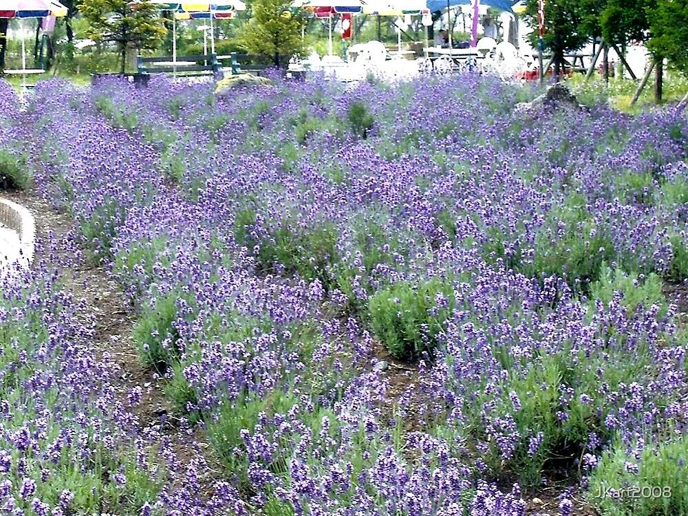 Pretty Japan Violet lavender - Photo by JK by JKart2008