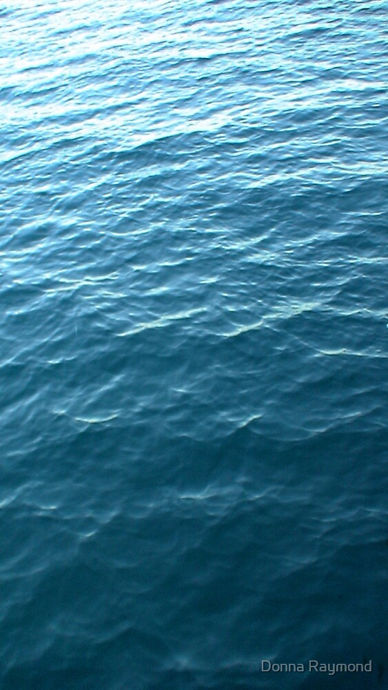 blue by Donna Raymond