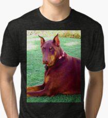 Doberman Dog Tri-blend T-Shirt