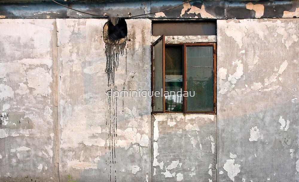 the other little window by dominiquelandau