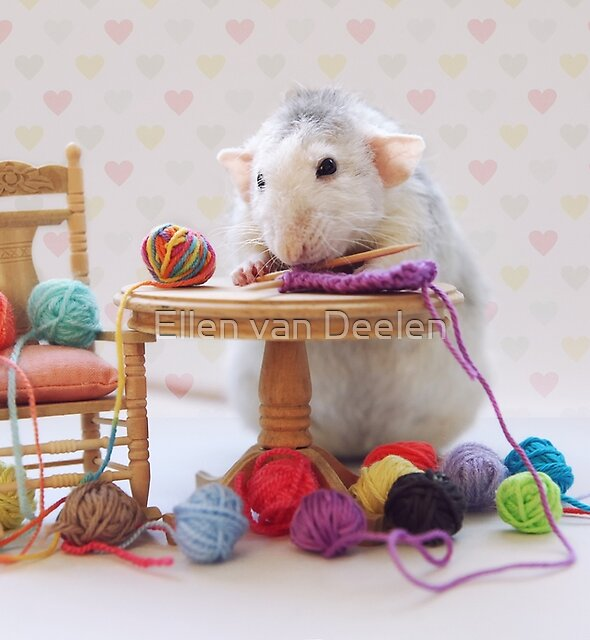 Rosie still knitting..... by Ellen van Deelen