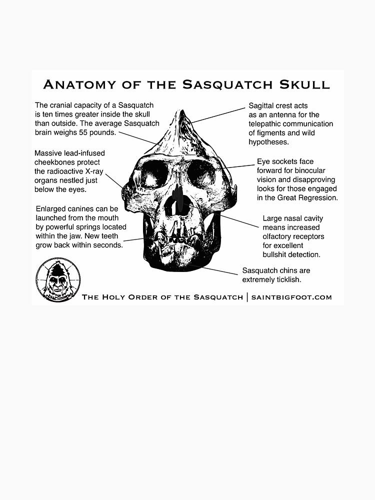 Anatomy of the Sasquatch Skull by SaintBigfoot