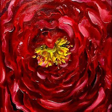 Scandulous Ranunculus by almalee