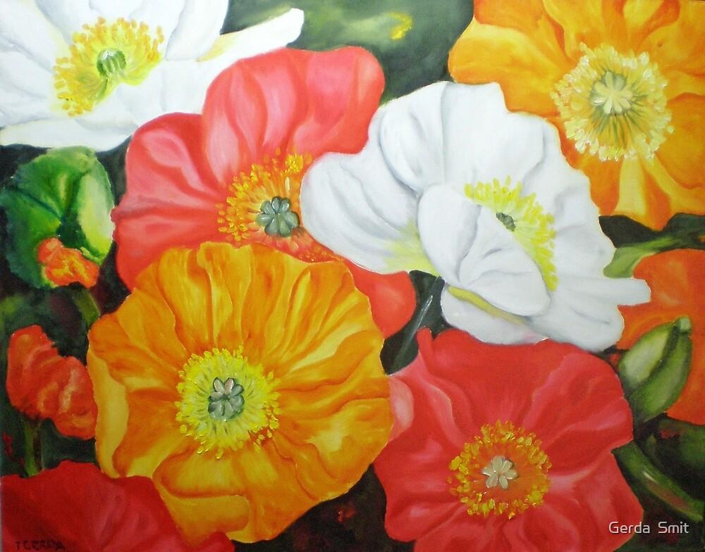 Poppy's by Gerda  Smit