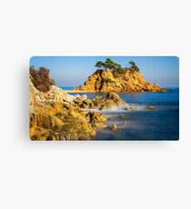Nice landscape of the Spanish coastal in Costa Brava Canvas Print