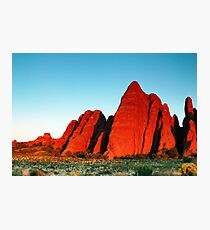 Red Fins Photographic Print