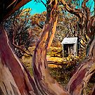 The Shack Outback by Julia Harwood