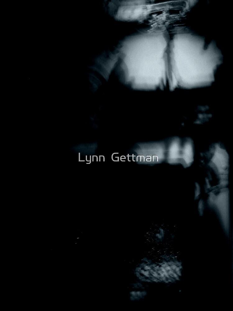 My mind's attic by Lynn  Gettman