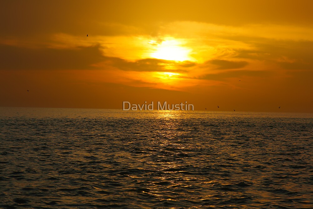Time Lapsed Cont... by David Mustin