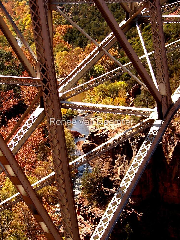 Taken from an old bridge in Montana. by Ronee van Deemter