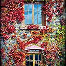 ~ Autumn Windows ~ by Leeo