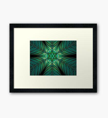 Stomata Framed Print