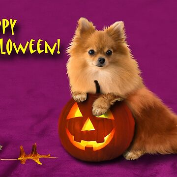 Halloween Pomeranian by jkartlife