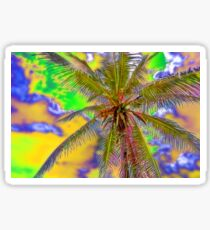 Unusual sky over the palm tree Sticker