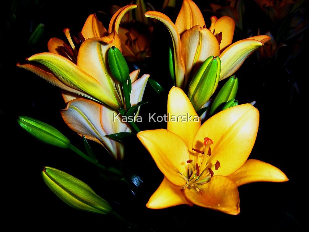 Lilies by Kasia  Kotlarska