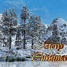 Merry Christmas-winter trees by Annika Strömgren