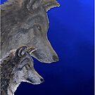 2 Wölfe /wolves Version8 von Doris Thomas
