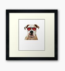 Too cool to drool Framed Print