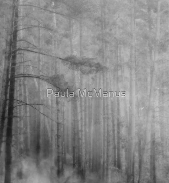 Forest fire by Paula McManus