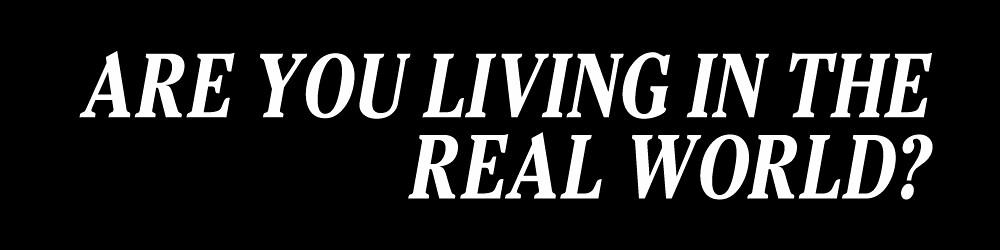 «¿Estás viviendo en el mundo real? - Cowboy Bebop» de AtomicLukai