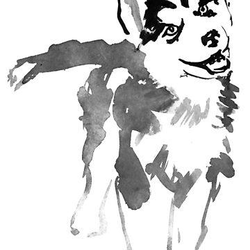 husky by pechane