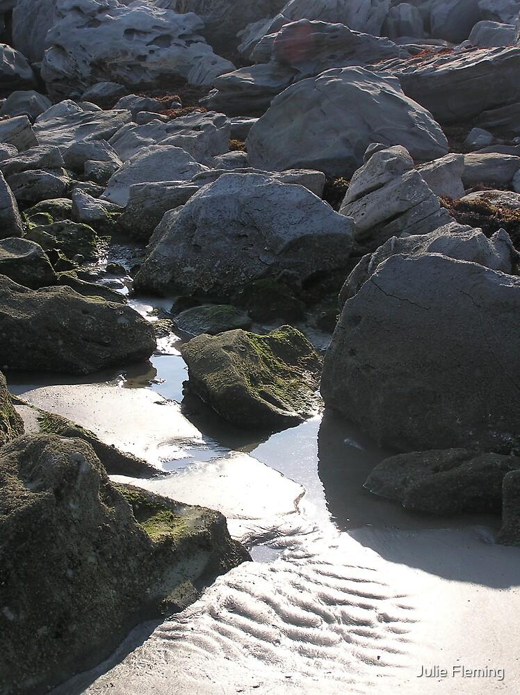 Beach rock by Julie Fleming