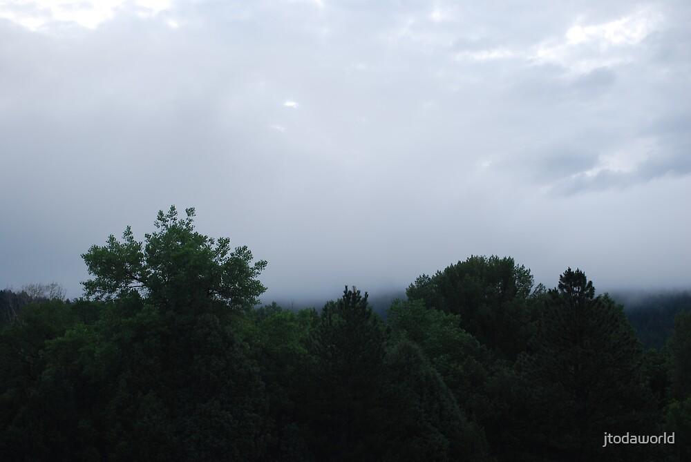Fog by jtodaworld