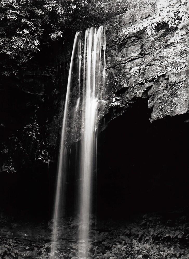 Suter Falls II, Savage Gulf by John O'Keefe-Odom