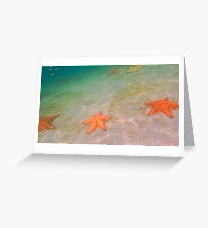 Starfish beach Greeting Card