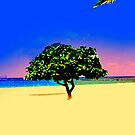 Kauai Sunset by Dennis Begnoche Jr.