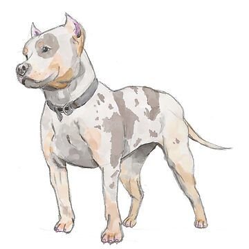 Watercolor Sketch Pit Bull Dog by namibear