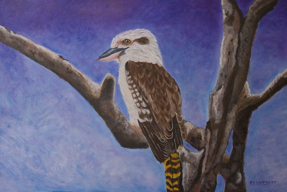 The Kookaburra by Elaine Whitby