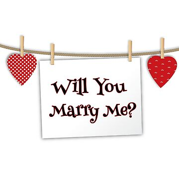 Will You Marry Me? Gift for Engagements by tuffkitty