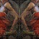 reflection 2 by Soxy Fleming