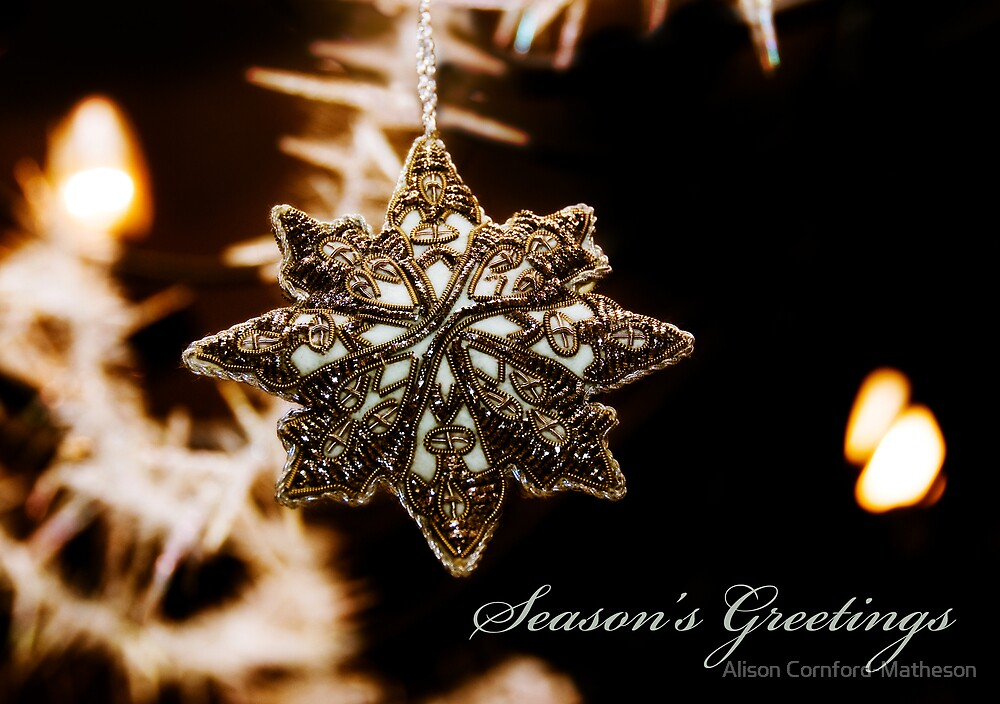 Season's Greetings Holiday Card by Alison Cornford-Matheson