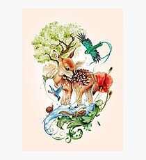 Deer with birds by Maria Tiqwah Photographic Print