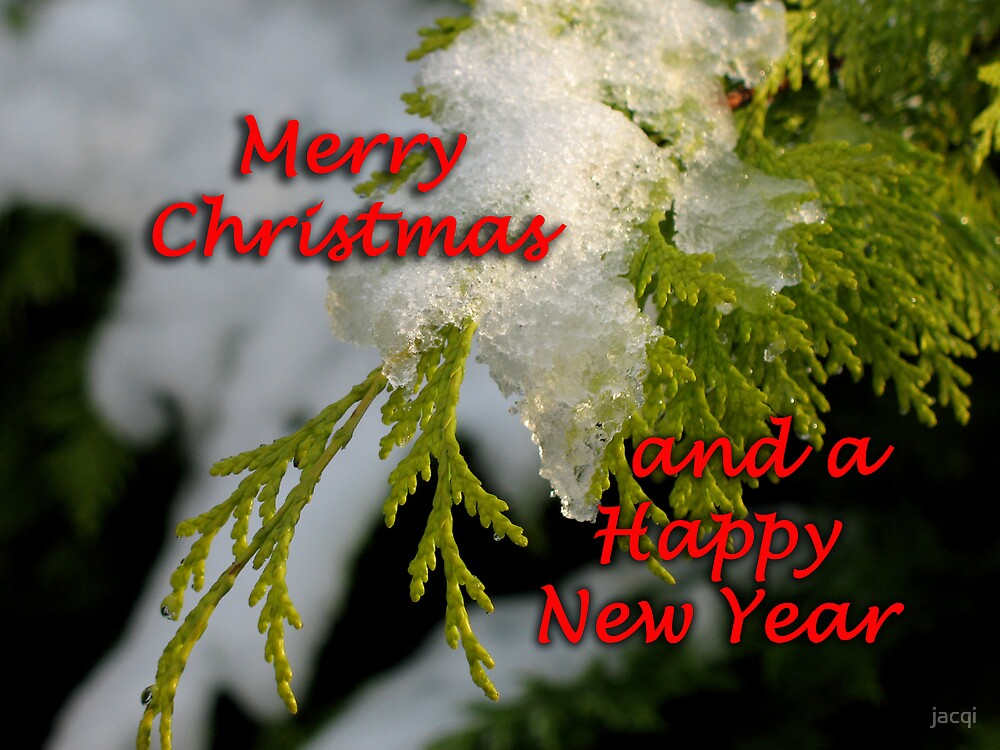 Christmas New Year card by jacqi