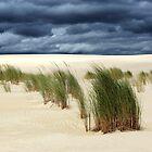 White Sand ...Western Australia by Angelika  Vogel