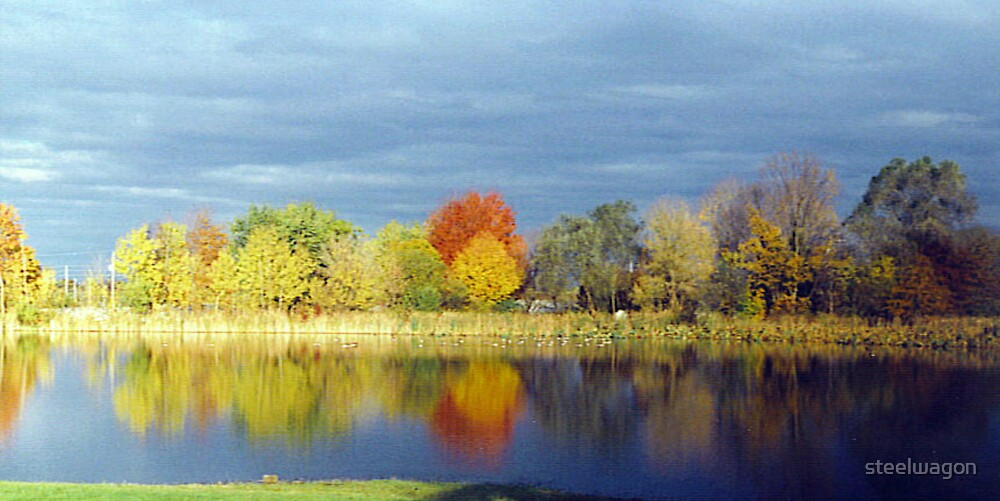 Autumn At Home by steelwagon