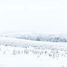 An Amersham Winter Wonderland II by Natalie Broome