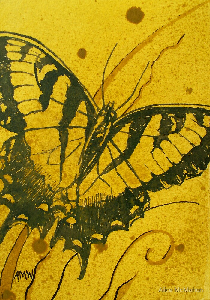 Medium Butterfly study 3 by Alice McMahon