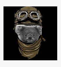 The koala Adventurer Photographic Print