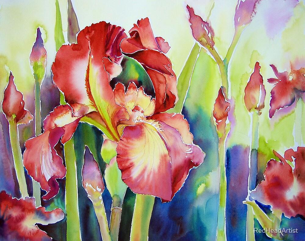 Sugar Iris by RedHeadArtist