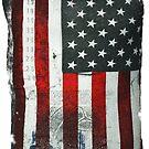 America Is Great Again by Fred Seghetti