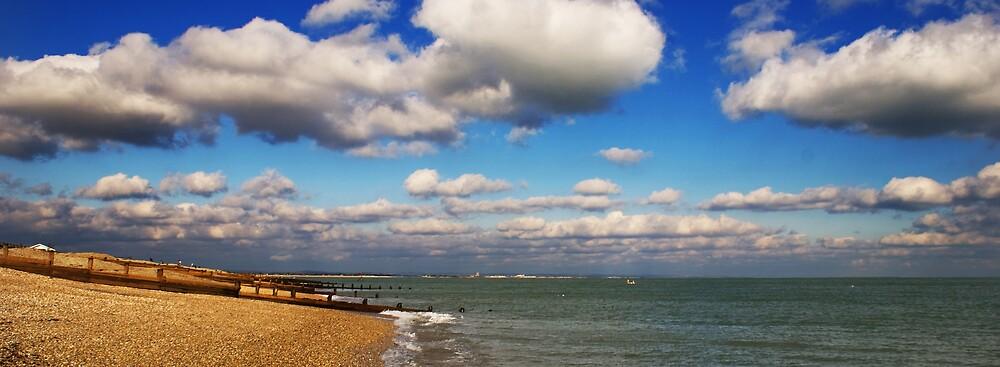 The empty beach by Matt Pannell