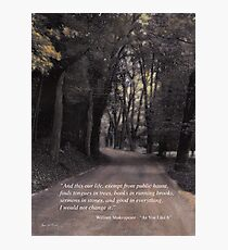 Shakespeare Quote Poster  Photographic Print