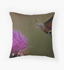 macroglossum stellatarum Throw Pillow