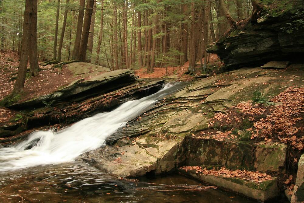 Waterfall by Selena Dittberner