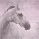 Grey Horse Pink Blush by Michelle Wrighton